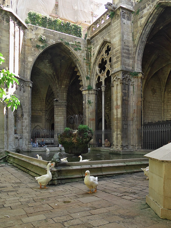 Live the mysterious places of Barcelona: Cathedral's Cloister